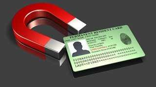 All information about the green card in the usa